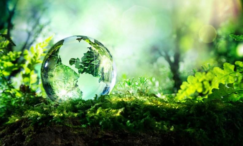 global environment governance_debates_theglobal