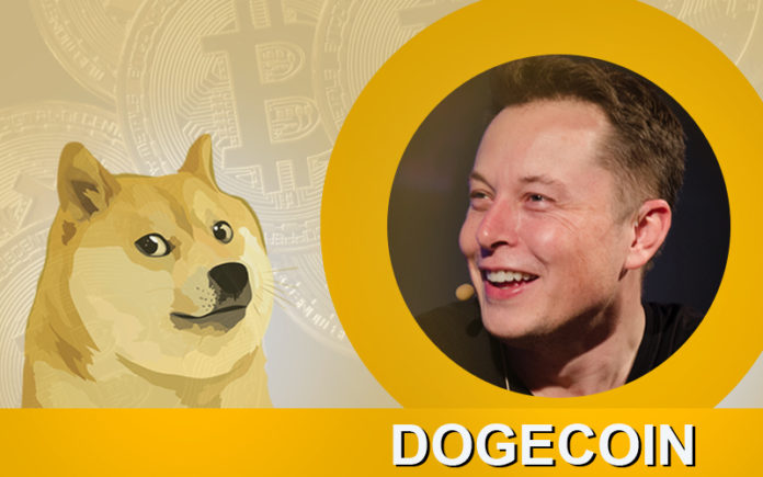 5 Reasons Why You Should Buy DogeCoin price cryptocurrency coin
