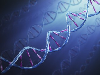 Half a Million DVDs of Data Stored in Gram of DNA