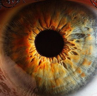 Windows to the Soul: Amazing Photos Show True Beauty of the Human Eye