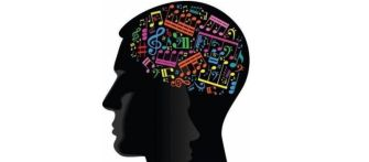 Learning a Musical Instrument Changes the Structure of the Brain