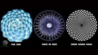 The Miracle of 528 Hz Solfeggio & Fibonacci Numbers