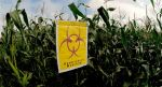 These Countries Have Banned GMOs. What's America Waiting For?