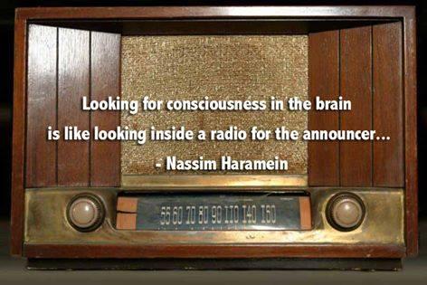 Nassim Haramein Quote