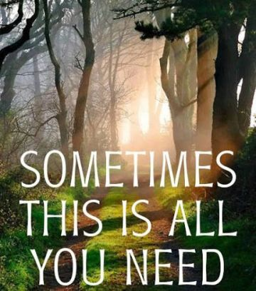 Sometimes This is All You Need