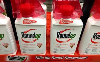 Major Lawsuit Against Monsanto Completely Blacked out by Media