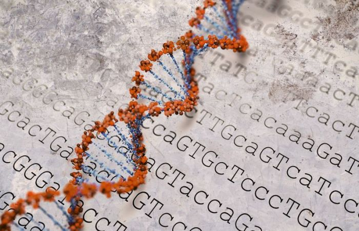 Son of Frankenstein? UK Body Backs Human Embryo Gene Editing