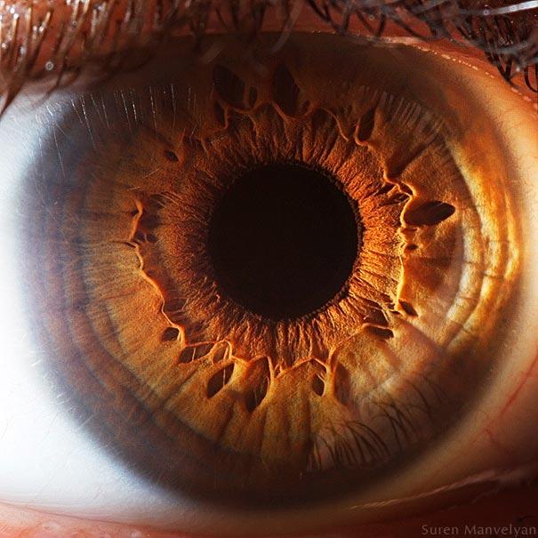 eye12