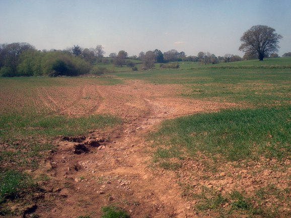 Topsoil Degradation