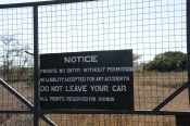 All rights for Rhinos - Lewa Downs