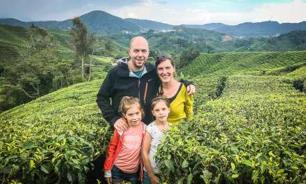 Travel Diary #4: Drinking tea in the Cameron Highlands