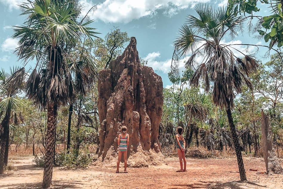 Termites Mounts Litchfield National Park Stuart Highway