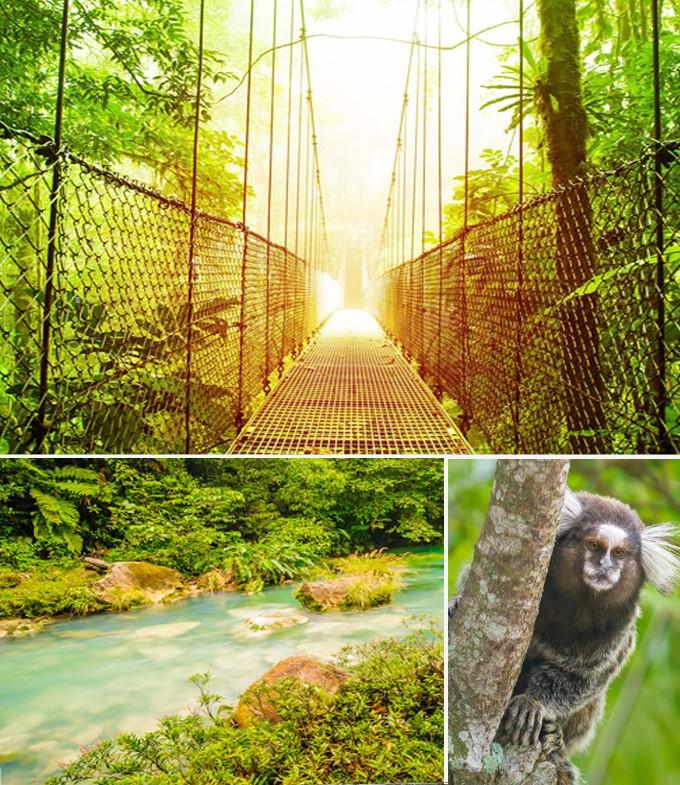 Selvatura parc Costa rica
