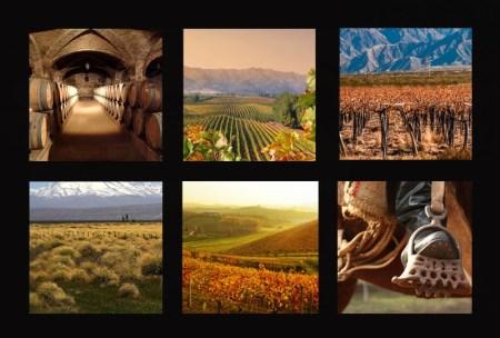 Mendoza Argentine vin