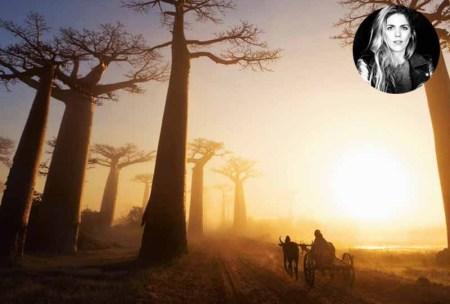 Madagascar activités