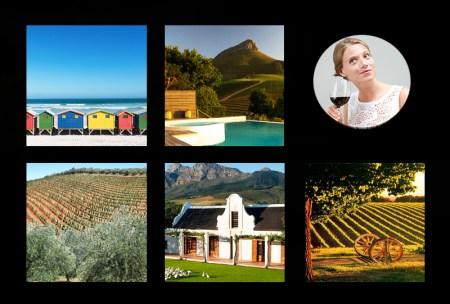 Le Cap vignobles Afrique du sud a voir