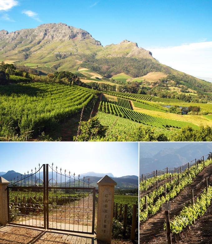 Vignoble de Franschhoek Le Cap Afrique du sud a faire