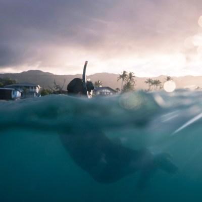 5877-snorkeling-half