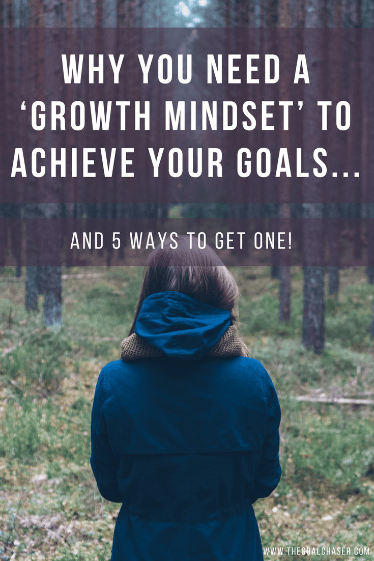 What got my attention, was that the perseverance, resilience and effort shown by those with a growth mindset are essential qualities required for extraordinary success in life.