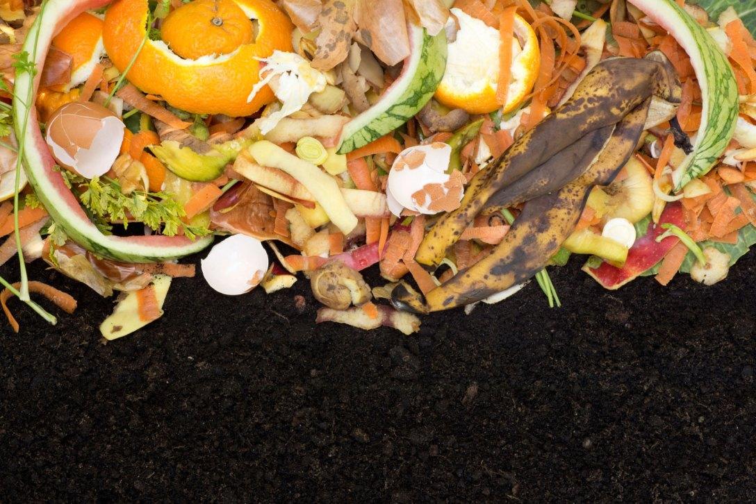 compost-mulch