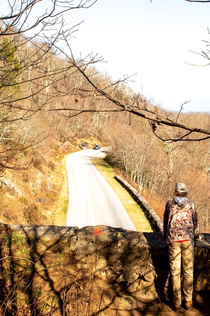 young man overlooking Blue Ridge Parkway in NC