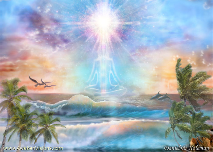 Daniel B Holeman - Coconut Sunrise Meditator