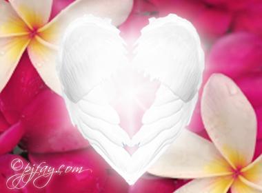 heartgarden2