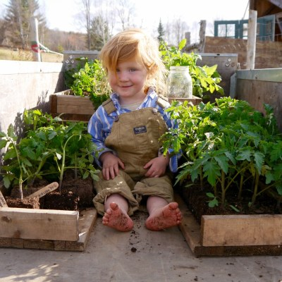 Dirty Hands, Happy Hearts: Growing with Kids in the Garden