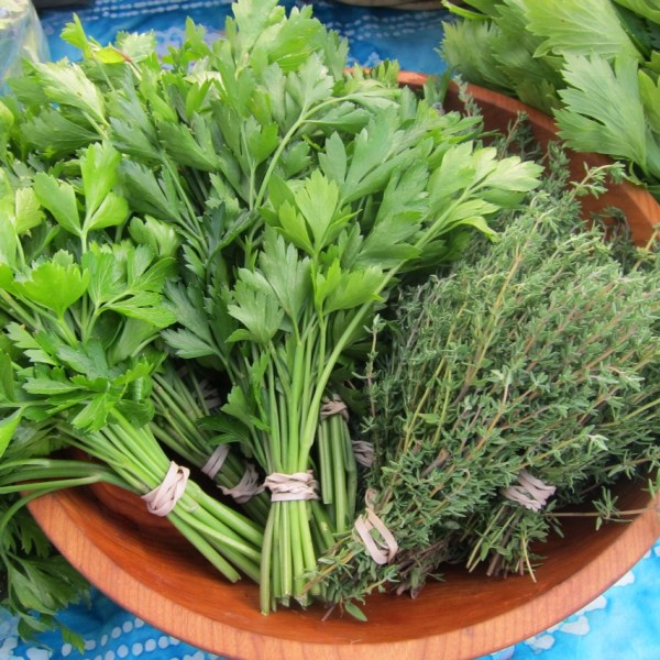 Beyond Basil: herbs and greens for pesto