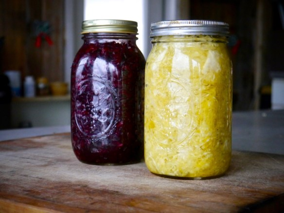homemade sauerkraut: beet kraut and curry kraut