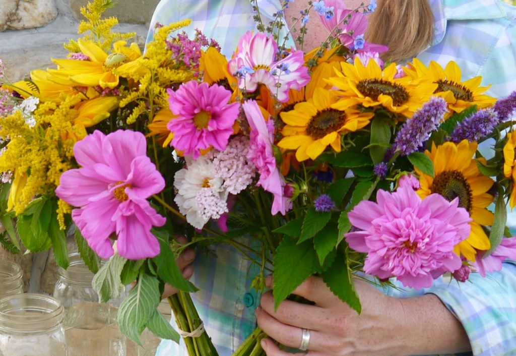 Organic cut flower bouquet with easy to grow varieties: soraya sunflowers, cosmos, and anise hyssop