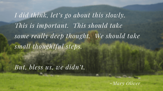 I did think, let's go about this slowly. Poem by Mary Oliver