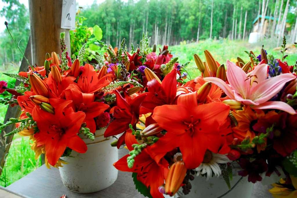 Organic Flower Bouquets at Calypso Farm