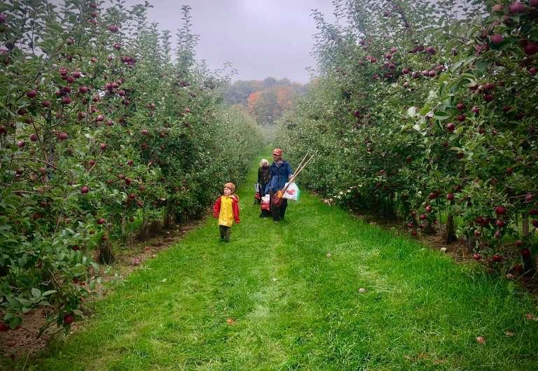Apple picking always leads to baking.  Try this anytime apple crisp recipe, for breakfast or dessert.