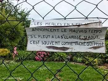 Bourges marais garden