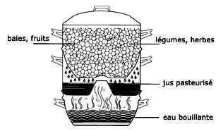 steam juicer