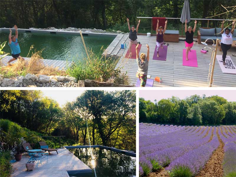 People doing yoga around a pool surrounded by fields of lavender