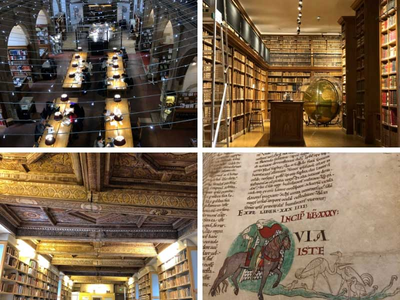 Library of Dijon, with ancient rooms of beamed ceilings lined with books