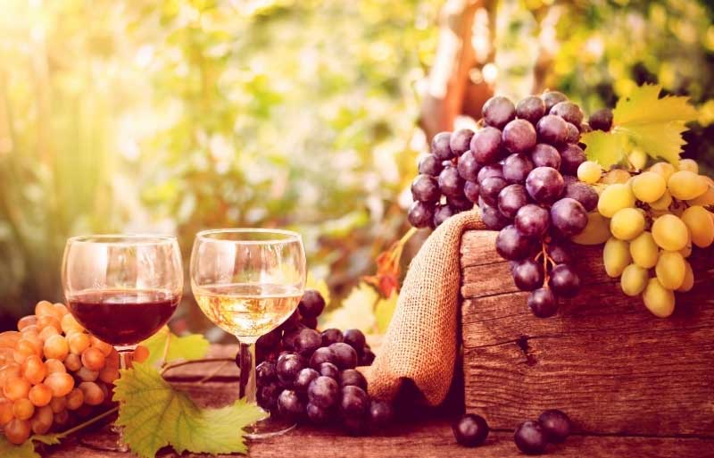 Glass of red wine and a glass of white wine with grapes