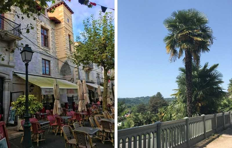 Palm trees grow on a walkway overlooking mountains in Pau