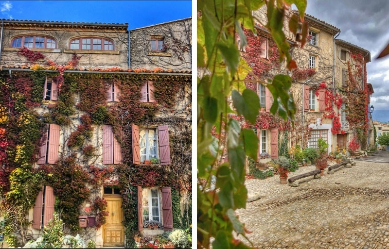 Buildings in Provence covered in autumnal ivy