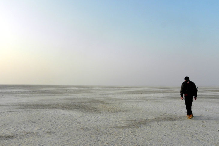 Gujarat_GreatRann_LonelyWalk - The colours of Kutch