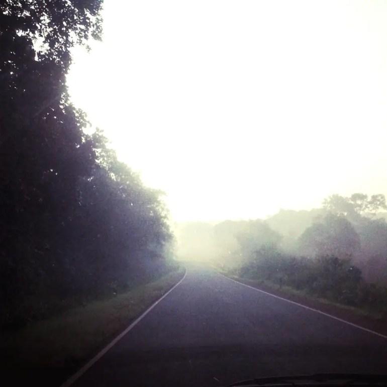 Mist in the Chorla ghats - An off-the-beaten-path Goan holiday