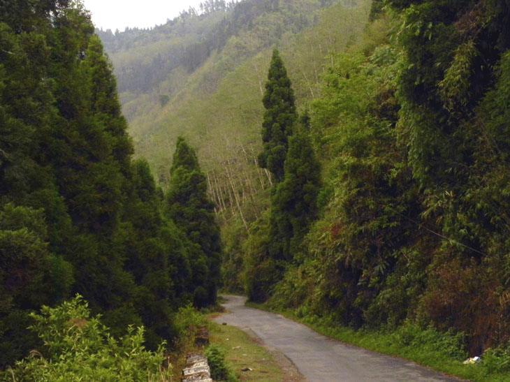 Kalimpong_DriveToTeesta_2