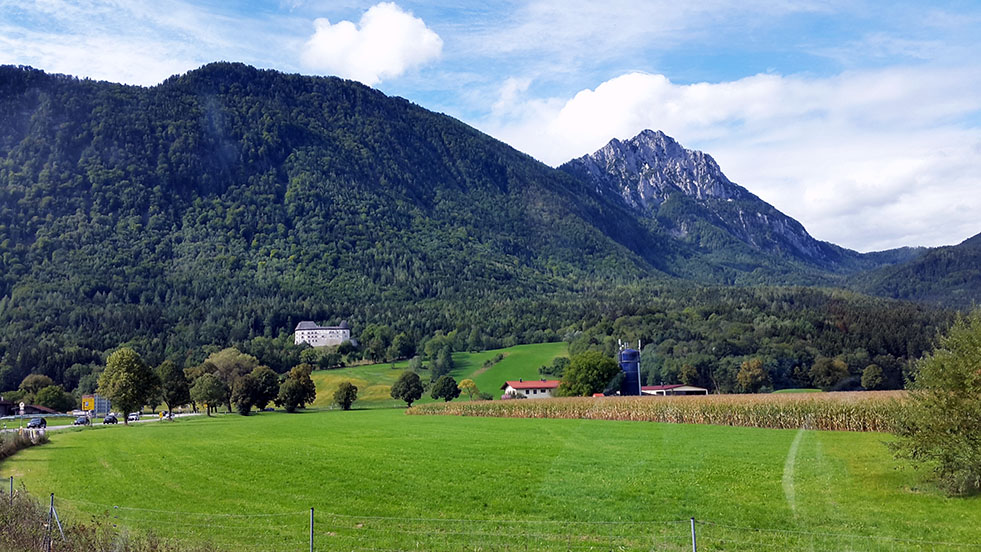 MEadow and field - Ainring, Salzburg and the Jenner: A road trip through Germany, and other ways to pass the time (Part 5)