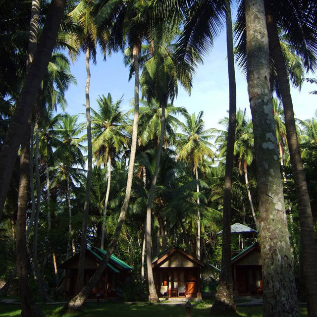 Andamans-Havelock-Seashell resort