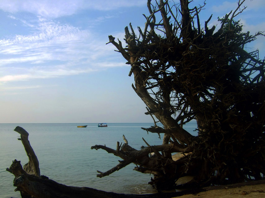 How we lived the island life for a few days in the Andamans