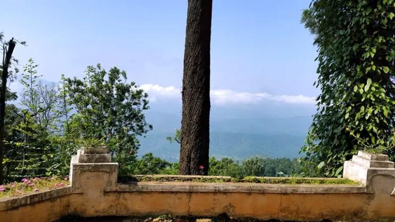 View from OLand estatate house, Nilgiris, India - travel photos