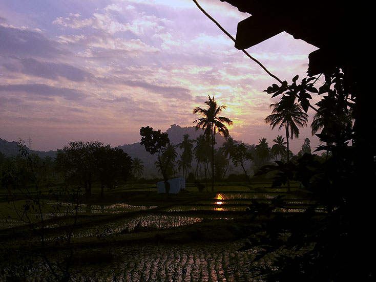 Hampi - Rice field sunrise.jpg