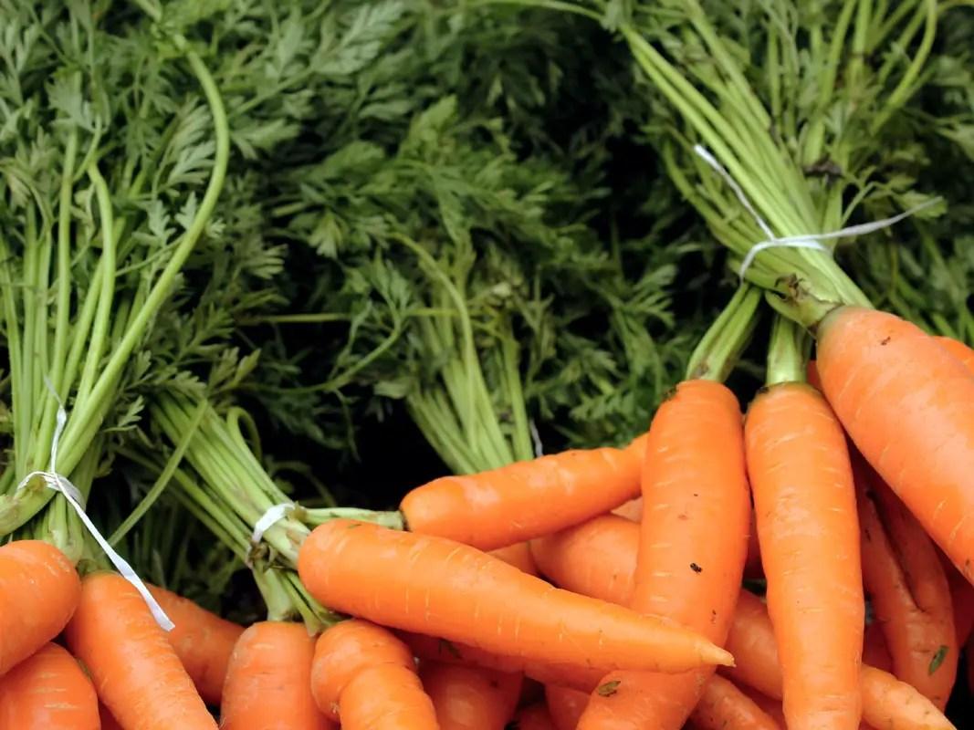Carrots on sale at Doddabetta Peak, Ooty, Coonoor, India - top 10 posts